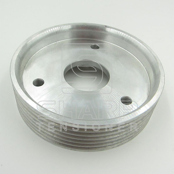 RE074  RENAULT TRUCKS FEBI 29501 DT 6.31050 KM FI12950 Pulley, power steering pump