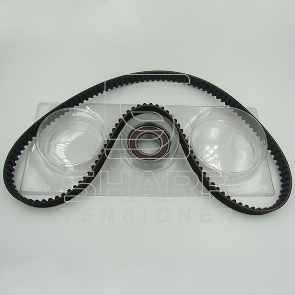 FIAT INA F554888 CONTITECH CT964K1  GOODYEAR GYK32109   Timing Belt Kit (2)