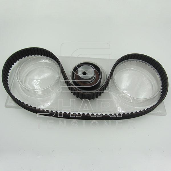 FIAT INA F555062 NYTRON KIT9000 Timing Belt Kit (2)