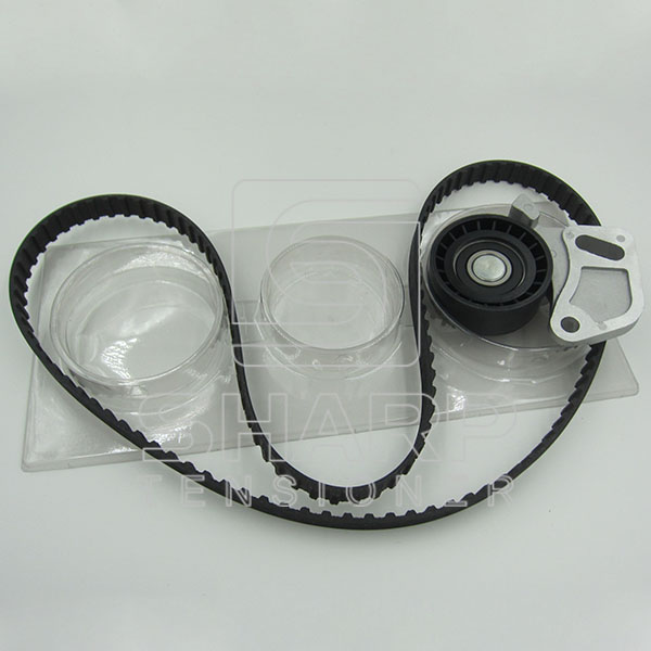 FIAT NYTRON KIT9004 Timing Belt Kit (1)