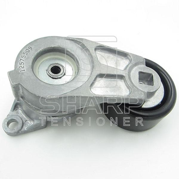 GM 12575509  12626644 4817877  Tensioner Lever, v-ribbed belt (1)