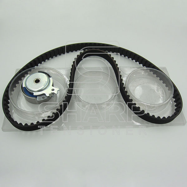 VAUXHALL  FEBI 14115 INA  F555070  Timing Belt Kit (1)