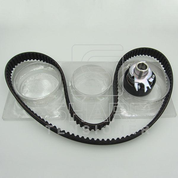 VW GATES KS100 INA  F555053  NYTRON  KIT9008  Timing belt kit (1)