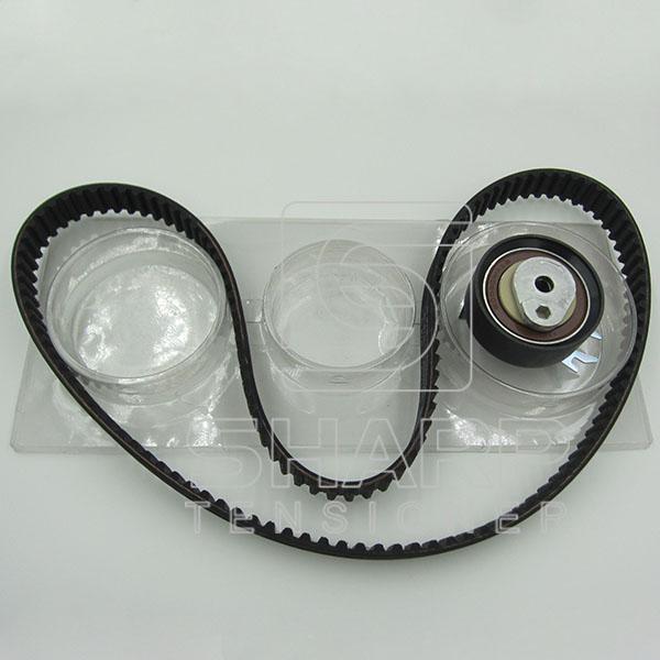 VW GATES KS100 INA  F555053  NYTRON  KIT9008  Timing belt kit (2)