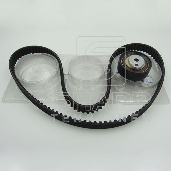 VW GATES KS100 INA : F555053  NYTRON : KIT9008  Timing belt kit