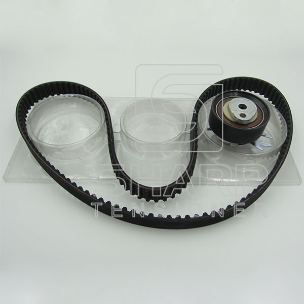 VW SKF VKMA01106 INA 530016610 Timing belt kit
