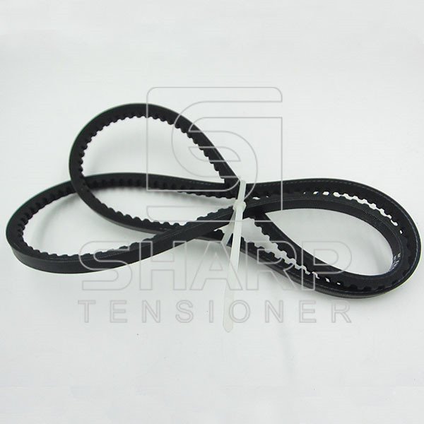 06580722201 06580470220 Man V-Ribbed Belts