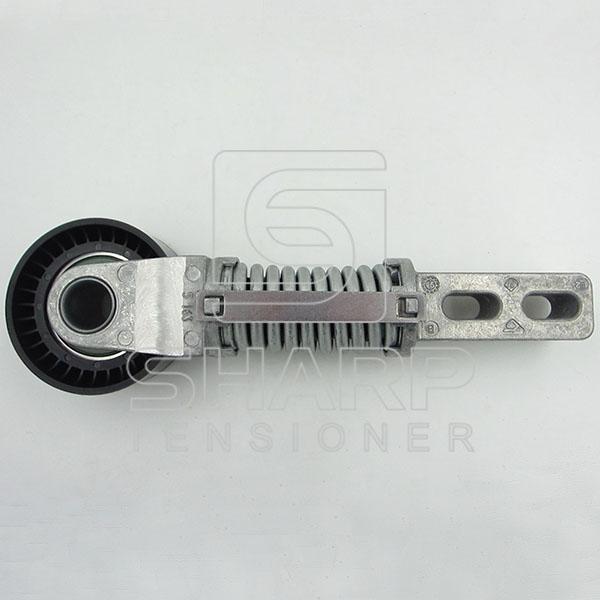 APV2364 533004920    For Renault belt tensioner,v-ribbed belt (1)