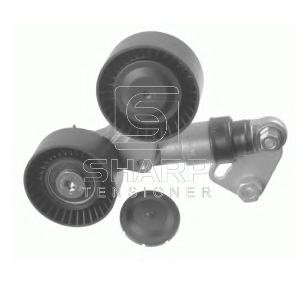 PQG000050 LANDROVER Belt tensioners,V-Ribbed Belt