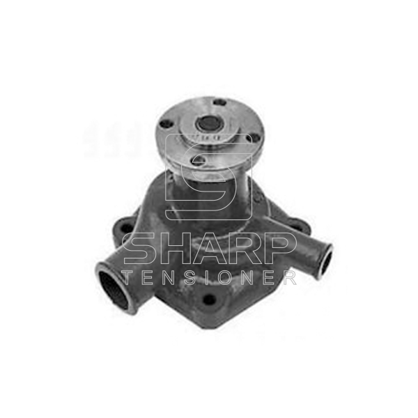 130100060703-299671a17701022333-water-pump-for-caseih