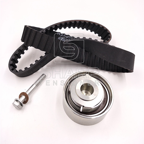 02931480 Timing Belt  Tensioner Kit Fits for Deutz