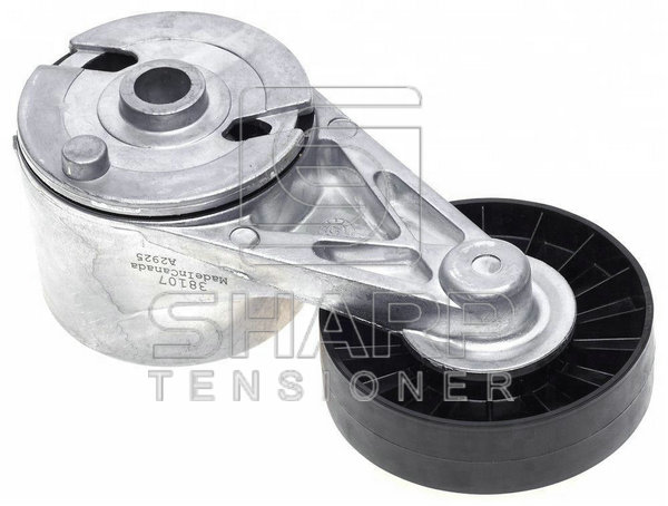 GENERAL MOTORS 10069964 Belt Tensioner Fits for GM4.3 V6 ENGINE FORKLIFT TIMING 2